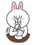 brown_and_cony-66